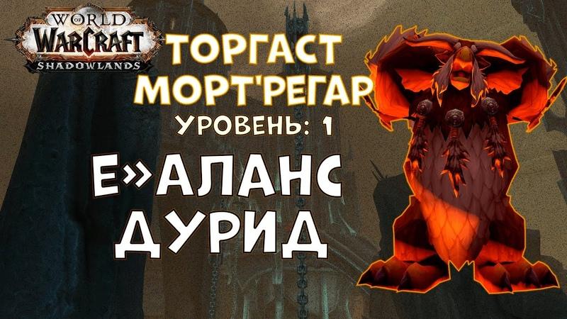 Торгаст | Мортрегар | Уровень 1 | Баланс Друид - World of Warcraft Shadowlands