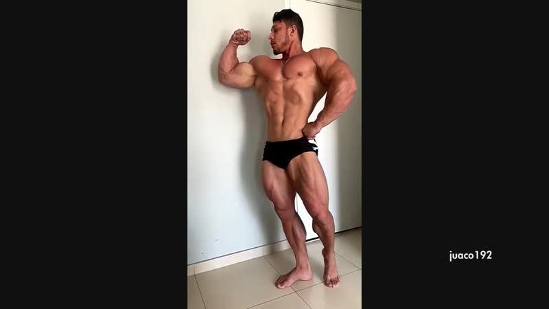 Bodybuilder Ramon D flexing muscles Bodybuilding HD