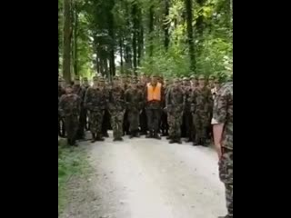 У армии Швейцарии есть особое подразделение морских пингвинов (смотри со звуком)