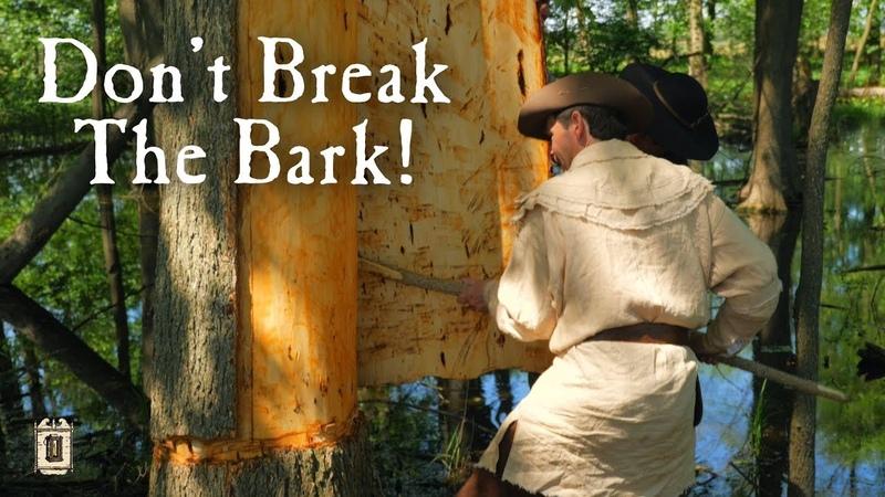 Building A Bark Canoe In 12 Hours Elm Bark Canoe Part 1