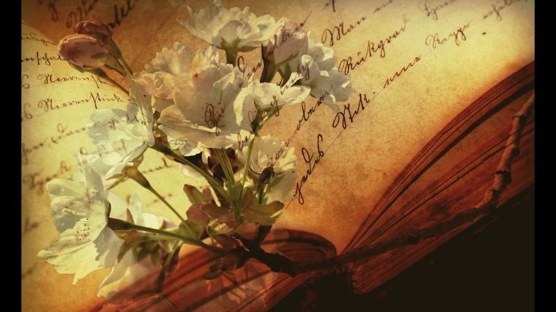 «МАТОТ»|«Почему Моше говорил начальникам колен» — В.Завалишин Числа (302-3242)