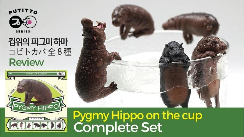 Pygmy Hippo 컵위의 피그미 하마 コビトカバ PUTITTO