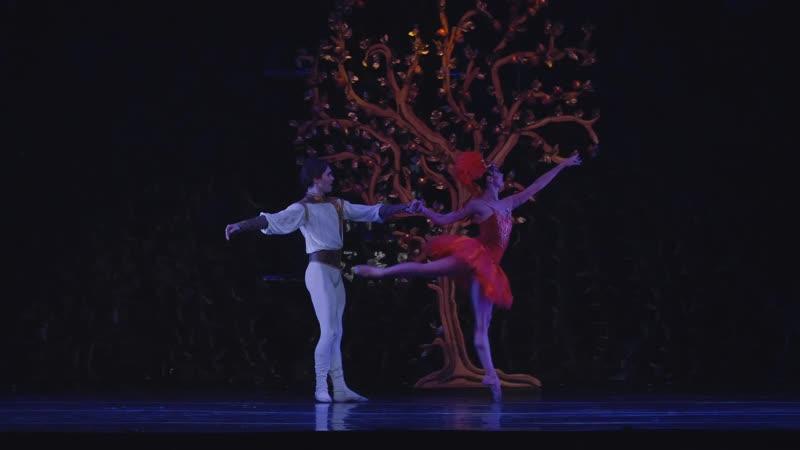 The Firebird choreography by Marcia Haydée Ballet de Santiago