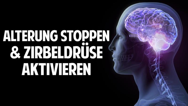 Alterung stoppen Zirbeldrüse aktivieren Denkleistung erhöhen Prof. Dr. Dr. Enrico Edinger