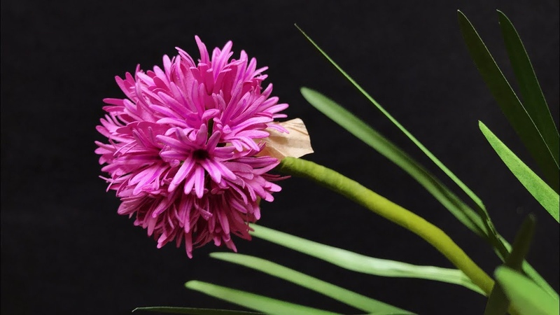 ABC TV | How To Make Chives Paper Flower - Craft Tutorial