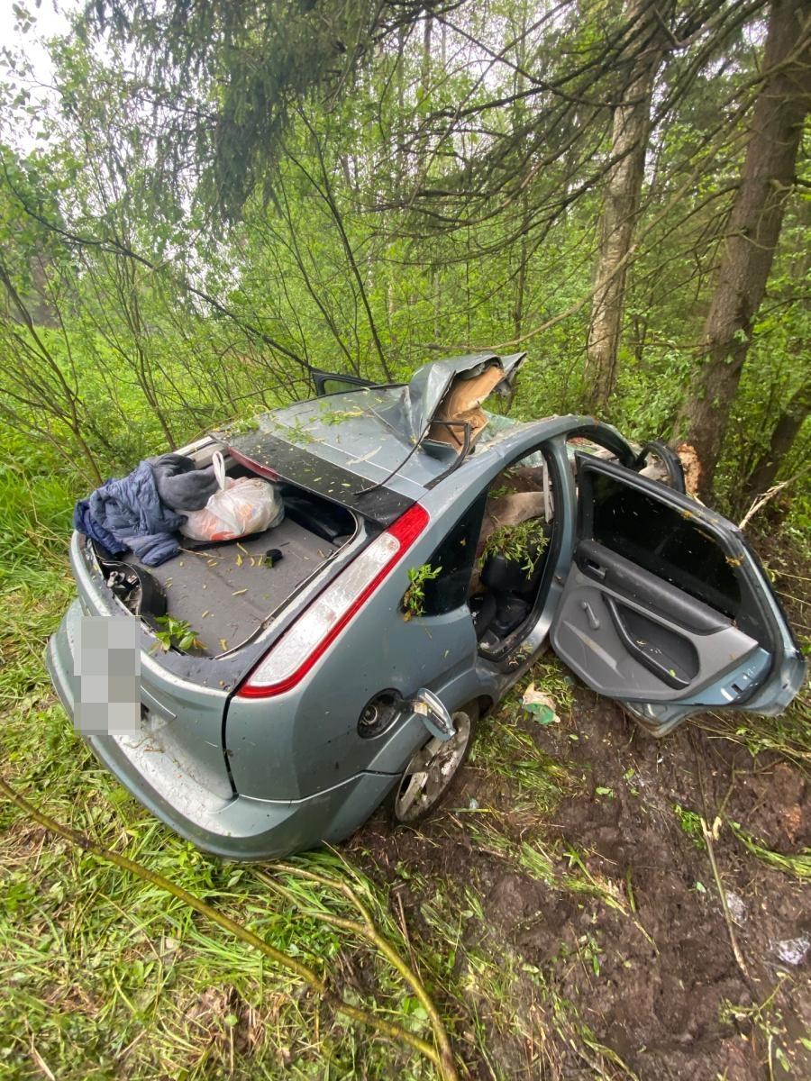 Водители двух машин стали жертвами столкновения с лосями в Тверской области