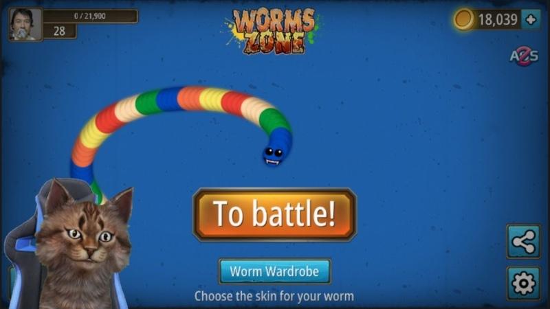 Kucing Lucu Main Game WormsZone Lagi Top 1 Global LIVE