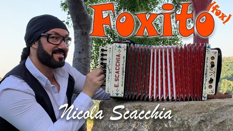 FOXITO - Nicola Scacchia e lorganetto tradizionale dubbotte acordéon (fox di Di Gregorio, Ruggieri)