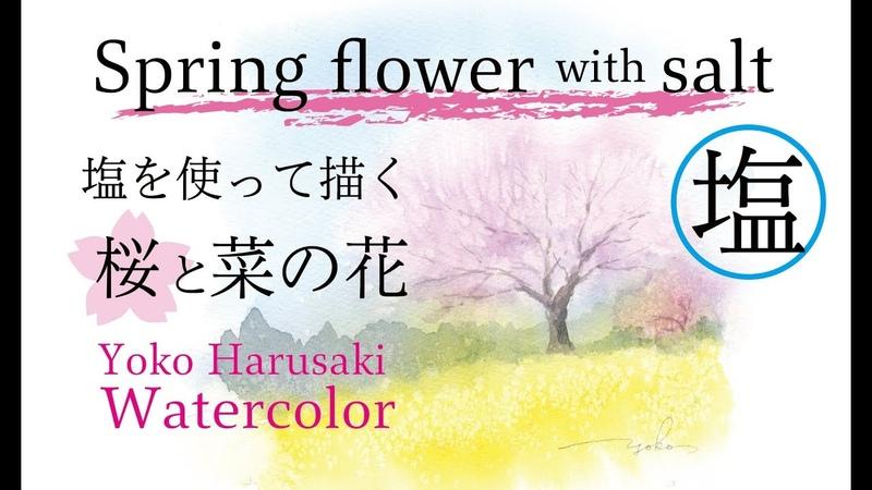 3色で水彩画 桜 塩を使って描く桜と菜の花 Spring flower with Salt Yoko Harusaki Painting with three colors