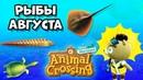 Все рыбы Августа в игре Animal Crossing: New Horizons (0 )