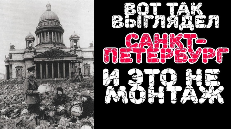 Правда 2019 о блокаде Ленинграда Санкт Петербург Вместо урока истории