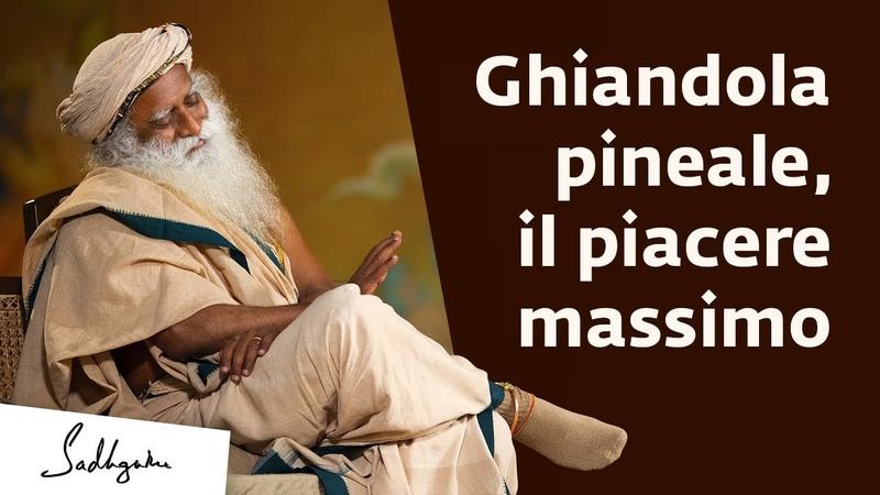 Ghiandola pineale, un piacere molto più grande del sesso | Sadhguru Italiano