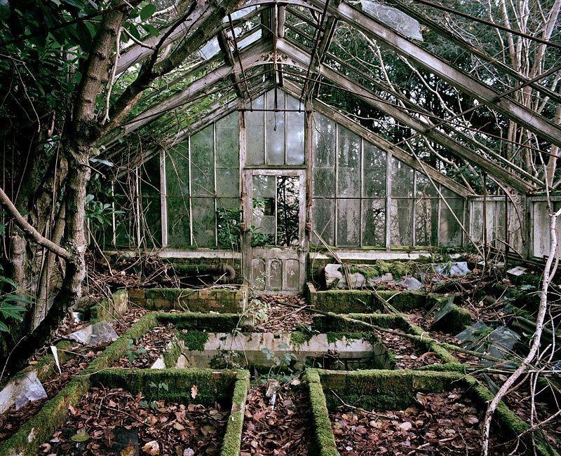 Заброшенные оранжереи