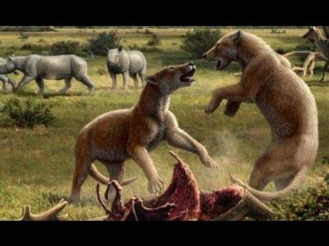 Доисторические хищники Челюсти как бритва Документальные фильмы передачи HD