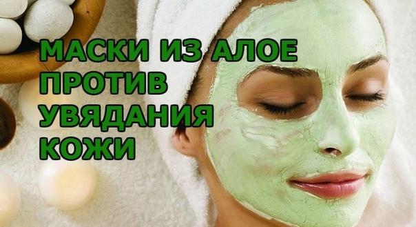 Полезные маски с алоэ, предотвращающие быстрое старение кожи