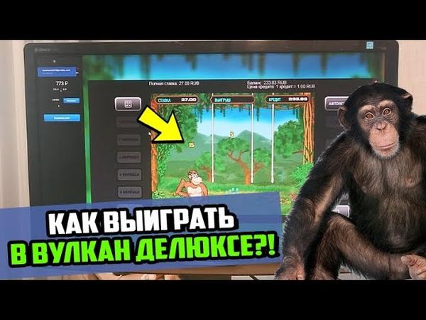 Как выиграть игровой автомат Crazy monkey казино Вулкан Делюкс
