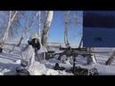 Охота на лисицу с манком Эпизод №2 Выстрел