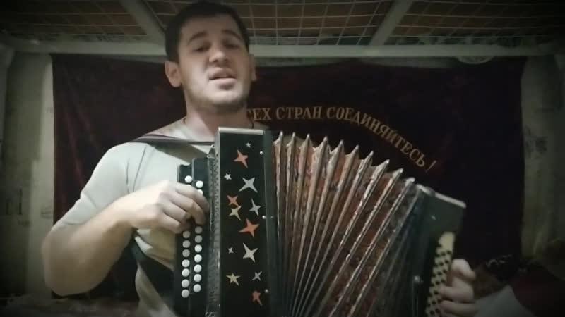 Я не стану ждать тебя на берегу - Виктор Королёв под гармонь! (исп. Владислав Городков)