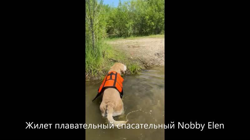 Жилет плавательный спасательный Nobby Elen