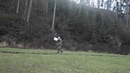 Combat archery - Shooting with a shield