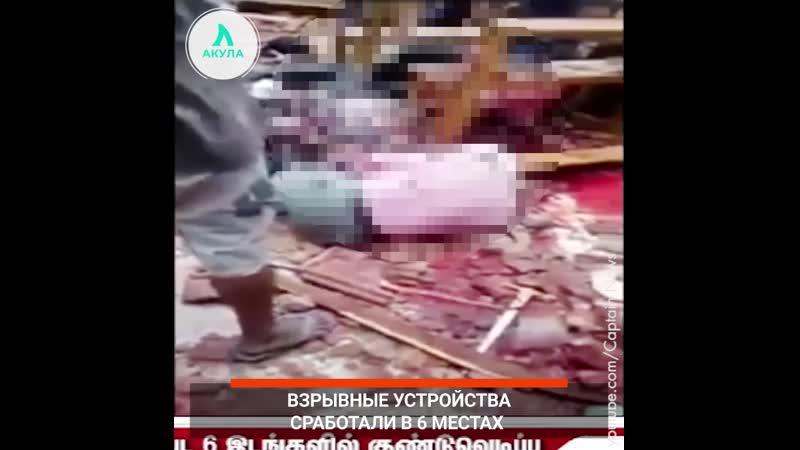 Взрывы на Шри-Ланке   АКУЛА