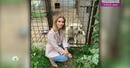 «Идет на поправку» Ольга Орлова рассказала о состоянии бежавшего за машиной пса
