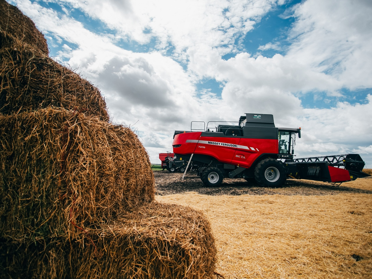 В Курской области ожидают до 5 млн тонн зерна