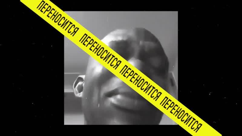 TONTRAST: HONEY BADGER Teaser