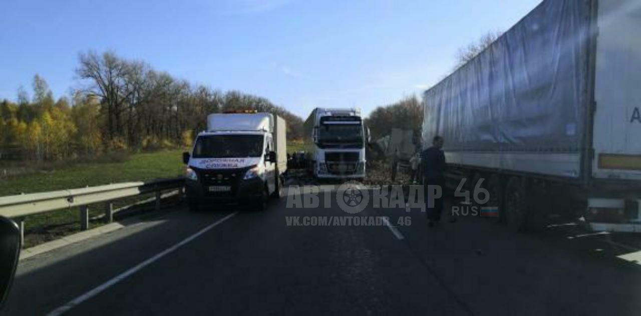 Три грузовика и три легковушки столкнулись в Курской области. Пятеро пострадавших