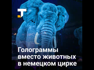 В немецком цирке отказались от животных в пользу голограмм
