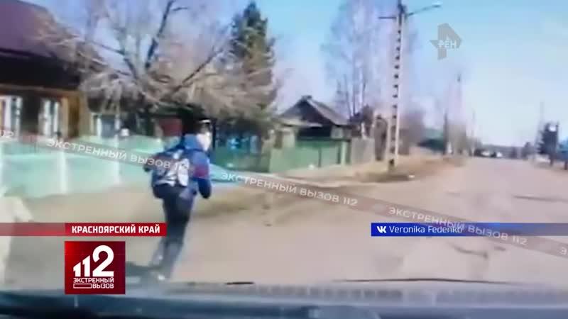 Огромный Алабай нападает на школьника Шок