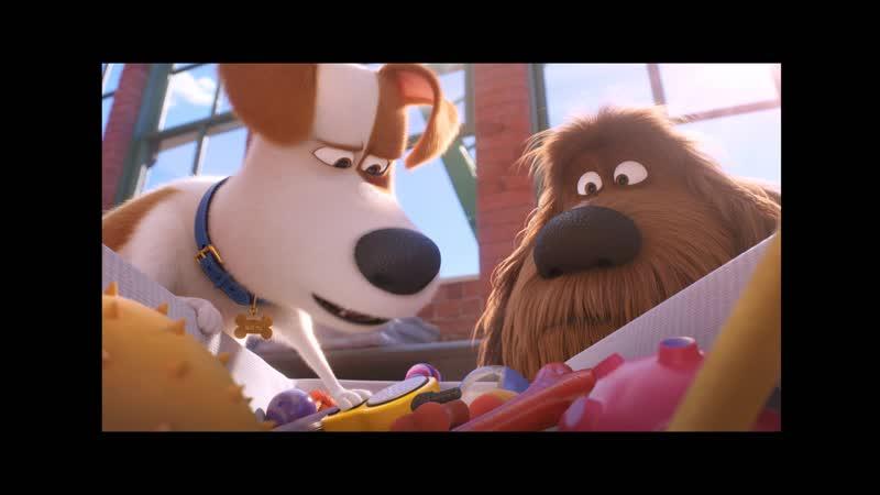 ТАЙНАЯ ЖИЗНЬ ДОМАШНИХ ЖИВОТНЫХ 2 3D 6 анимационный блокбастер, приключенчесая семейная комедия