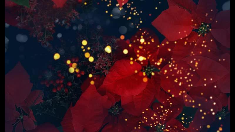 Валерий Брюсов - Ночные цветы (читает Максим Платонов)