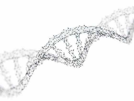 Ты не можешь похудеть из-за своего генотипа Это объясняет то, как одни могут есть запрещённые продукты и не толстеть, а другие пухнут как на дрожжах. Итак, определяем свой генотип: Собиратель