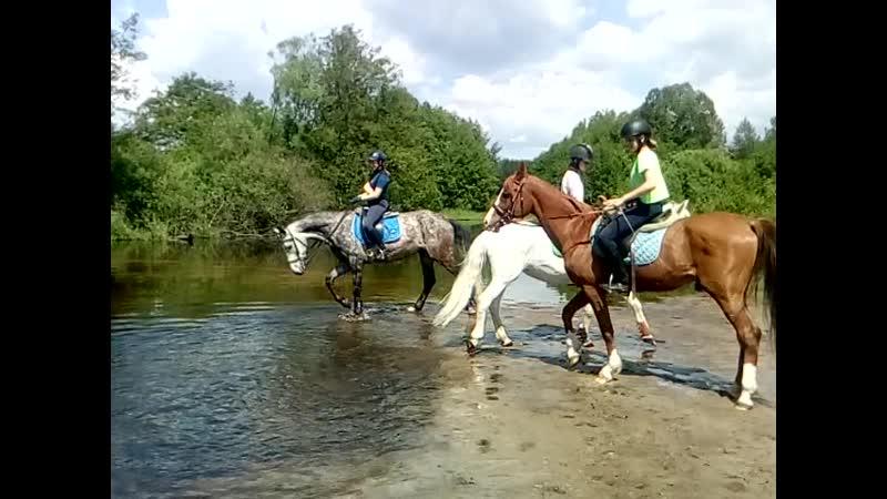 По маршруту через поля к реке