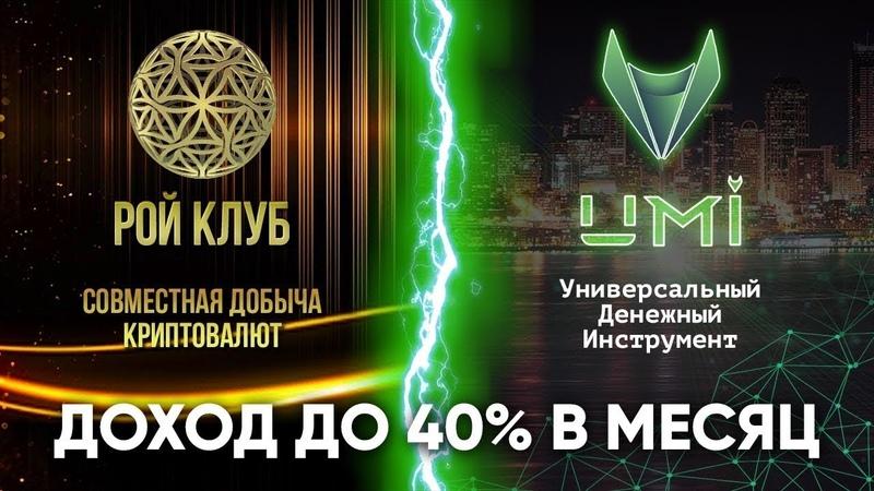 РОЙКлуб и UMI — доход до 40 в месяц l Эпохальный союз нового десятилетия
