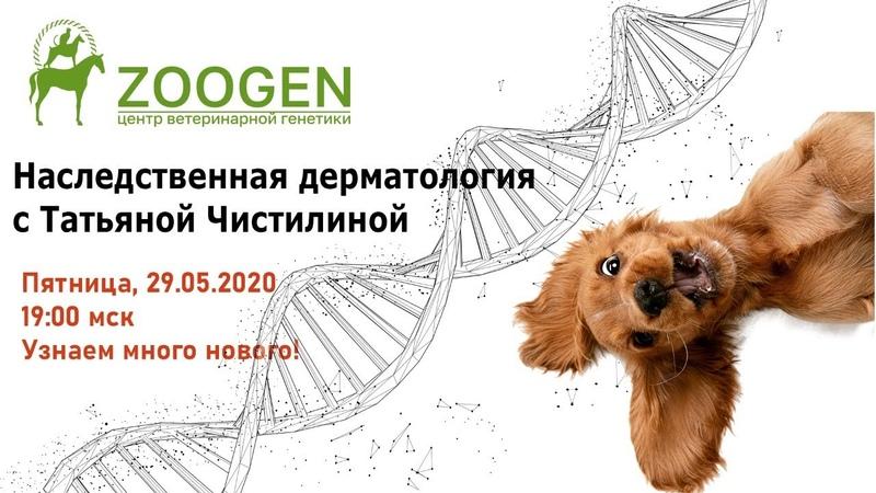 Наследственная дерматология много ли ее в жизни собаки?