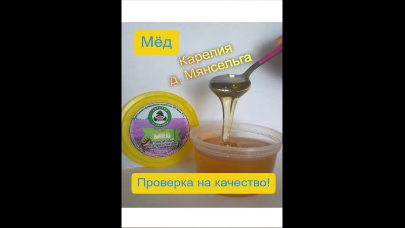 Проверка мёда на качество