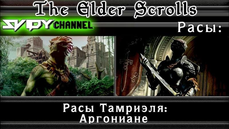 The Elder Scrolls Расы Тамриэля Аргониане Лор