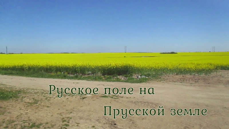 Русское поле на Прусской земле