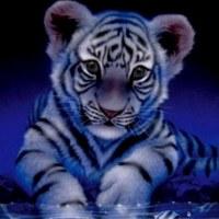 Фотография профиля Аюны Жамсарановой ВКонтакте