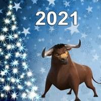 Логотип Новый Год 2021 Челябинск и Челябинская область