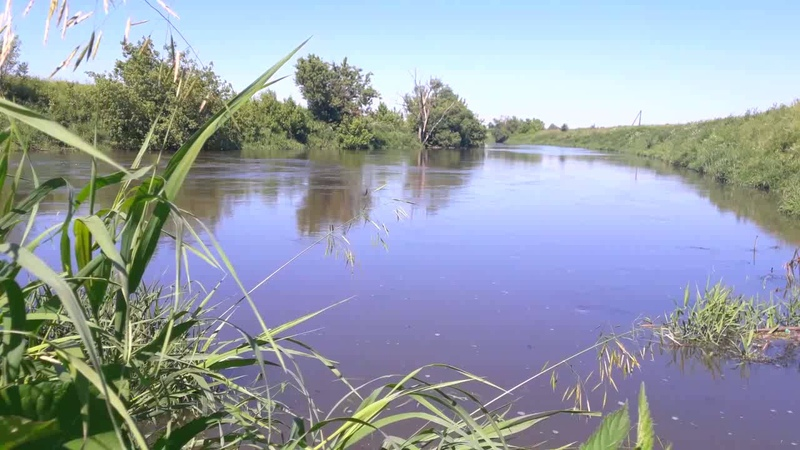 Знойный полдень на реке Упе Sultry noon on the river