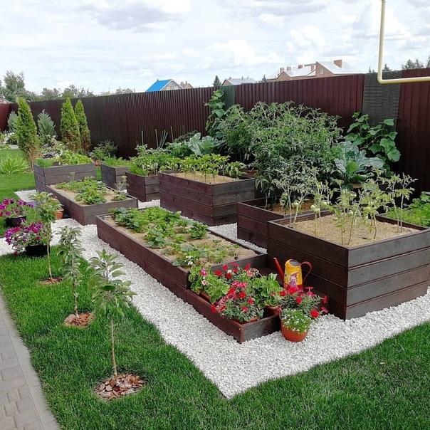 Маленький и ухоженный огород