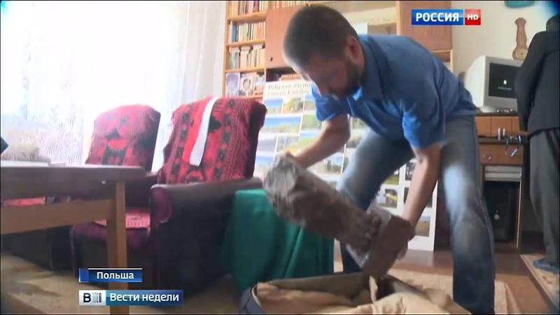 Новости Поляки не забыли, как бандеровцы рубили топорами и жгли их детей