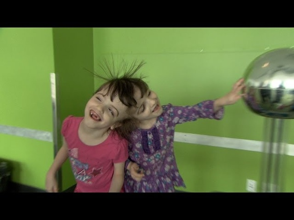 Twin Life: Sharing Mind and Body