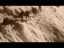 История отечественного военного альпинизма. Фильм 1
