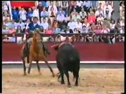 Португальская коррида Лошадь по имени Мерлин