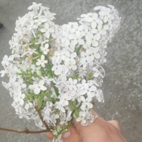 Фотография профиля Анастасии Чустеевой ВКонтакте