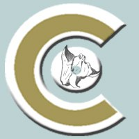 Логотип Chilim Records студия звукозаписи